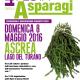 Asparagi_Fuoriporta