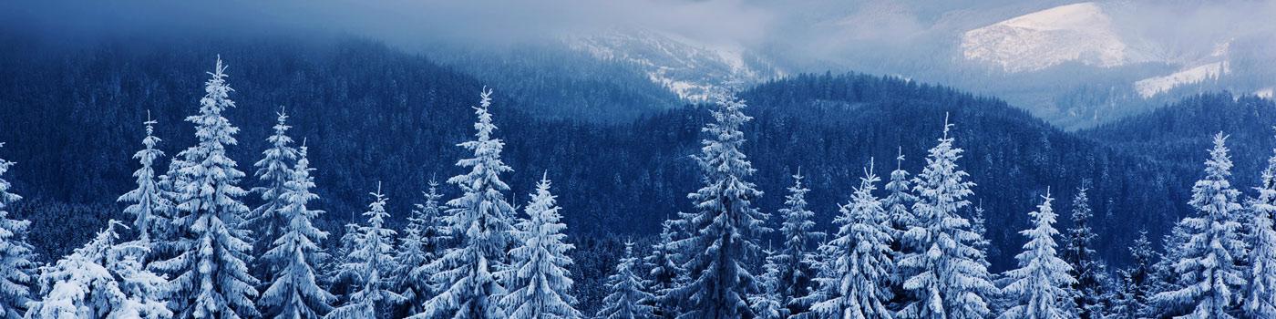 Fuoriporta-inverno