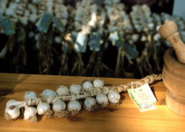 aglio vessalico