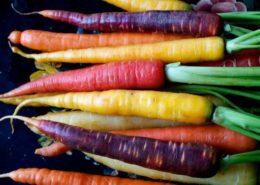 carote-multicolor-e1393969193725-637x478