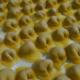 tortellini_fuoriporta