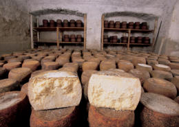 "Cheese is probably the most consumed and delicious food of Barbagia, the most ""true"" and wildest area in Sardinia"