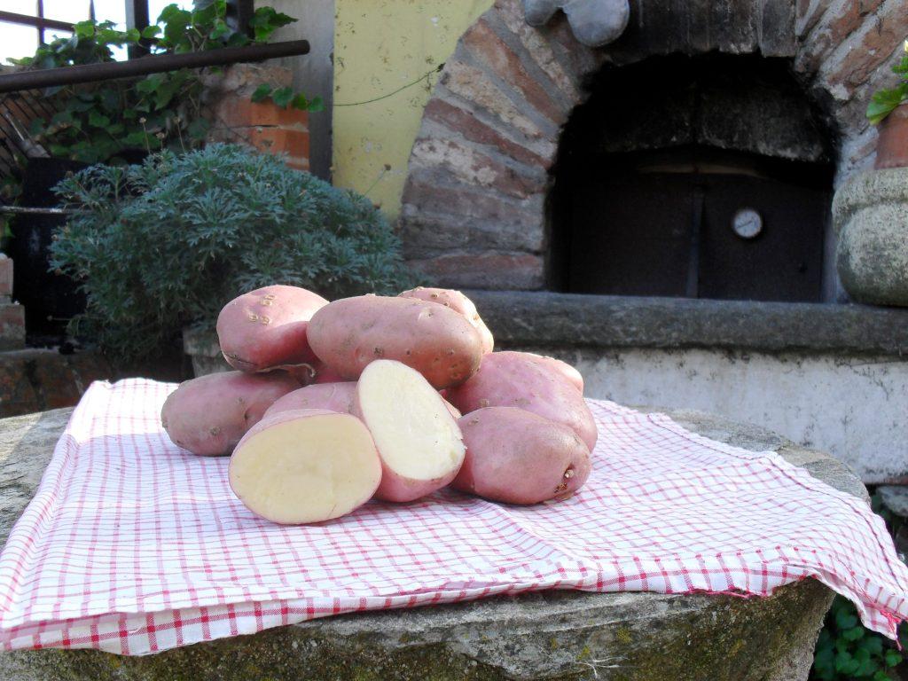 patata ciarda_Fuoriporta