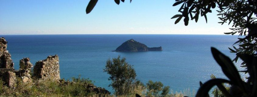 Isola_Gallinara-regione_Monti
