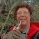 Potare le olive in Val di Chiana, la storia di Patrizia