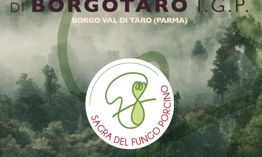 A Borgotaro è una una star! Il Fungo Porcino IGP